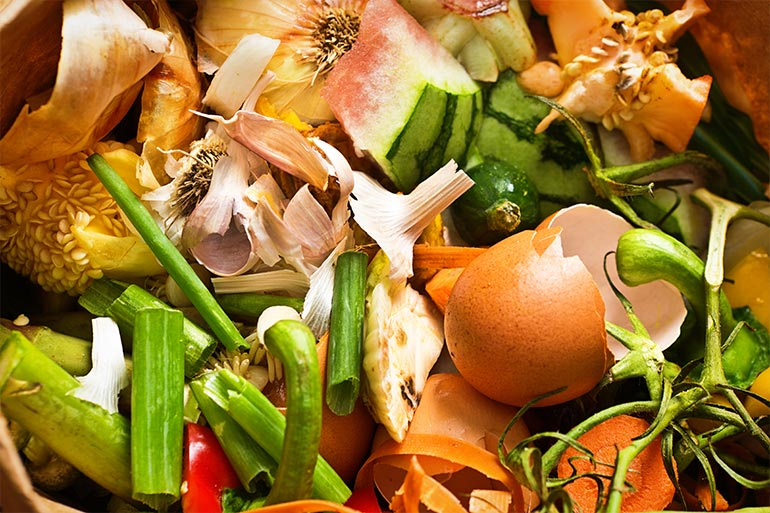 FLX-Blog-The-Impact-of-Food-Waste-and-Why-It-Matters-To-Your-Company
